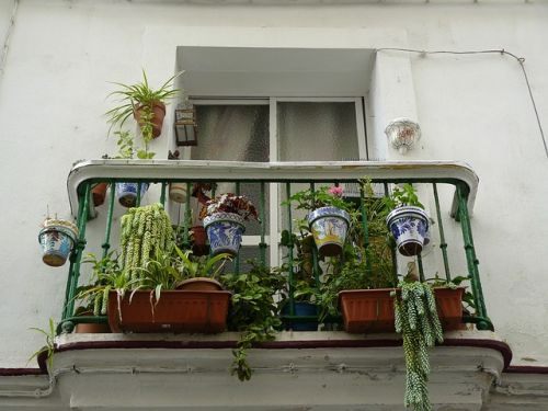 balcony guardrail plants_renoquotes.com